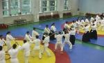 Aikido_Seminar_June_2010_1