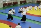 Aikido_Seminar_June_2010_2