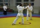 Aikido_Seminar_June_2010_8